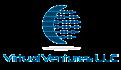 Virtual Ventures LLC